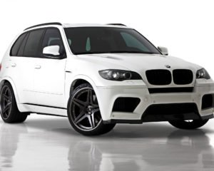 BMW X5 E70 масло для двигателя