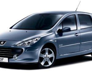 Peugeot 307 масло для двигателя